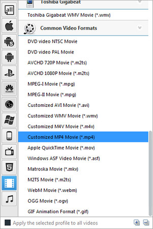 choose mp4 as the output format