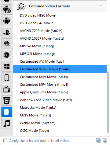 Choose WMV as the output format